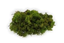 Severský mech 300g světle zelený
